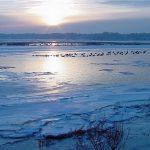 Photo of winter sunrise over 100 Acre Cove