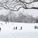 Photo of winter sledding