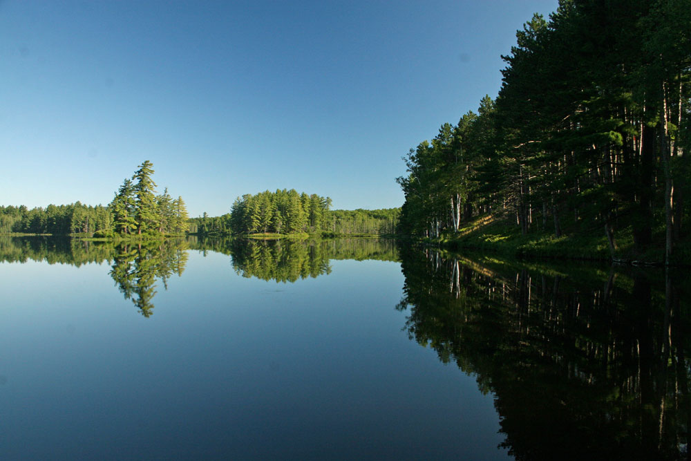Photo of pond mirroring trees and sky