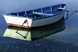 Photo of blue and white rowboat tied up at shore